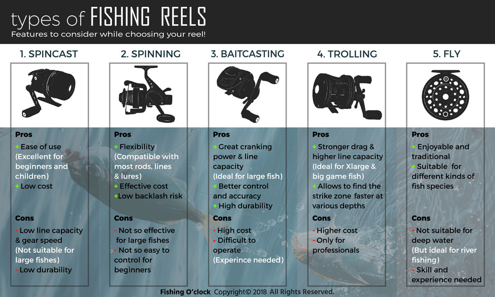 types of fishing reels infographic