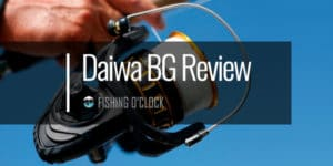daiwa-bg-fishing-reel-review