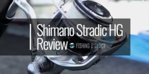 shimano-stradic-hg-fishing-reel-review