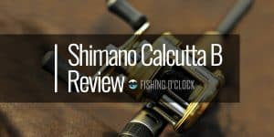 Shimano-Calcutta-B-fishing-reel-review