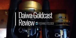 Daiwa Goldcast Fishing Reel Review