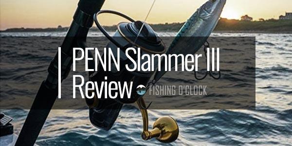 PENN Slammer III Review - (6+1 Stainless Steel Bearing System)