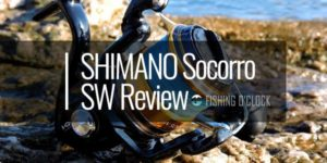 SHIMANO Socorro SW Reviews Featured Image