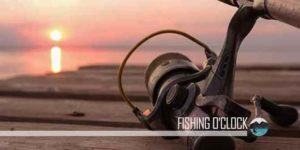 Best Rod and Reel Combo Reviews buying-guide featured