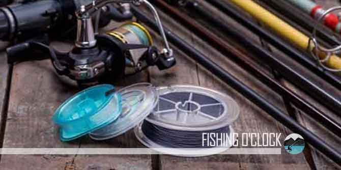 Fishing Line Types featured