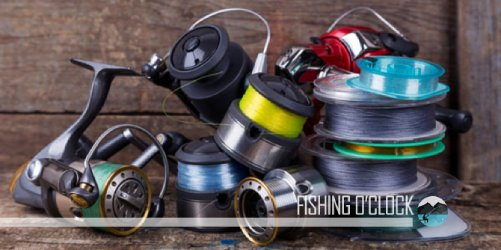Braided vs Monofilament Fishing Line-