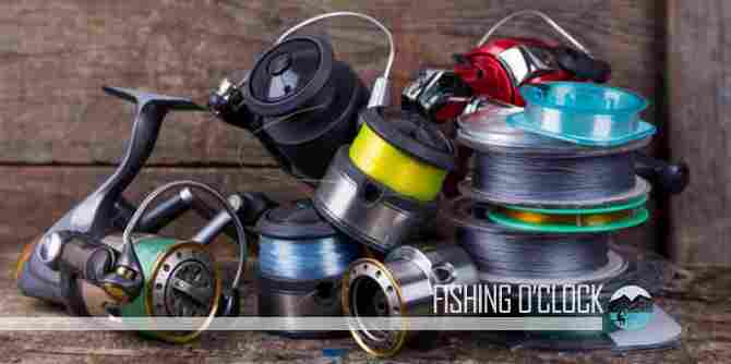 Braided vs. Monofilament Fishing Line